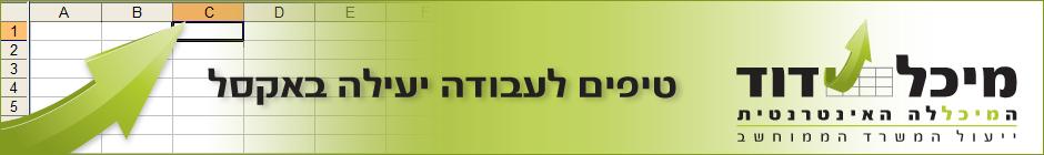 קורסים וטיפים באקסל מיכל דוד המיכללה האינטרנטית